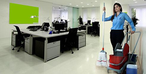 Elmas Temizlik - Ofis Temizleme